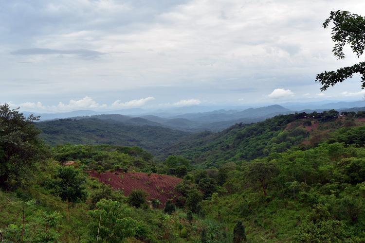 Mzuzu-Nkhata Bay road